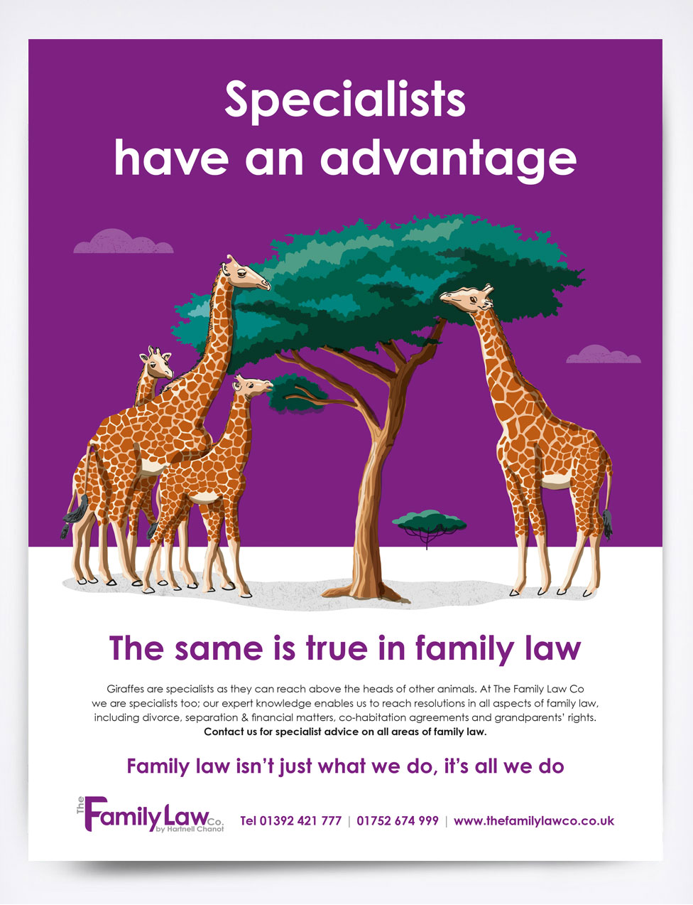 The Family Law Co Giraffes Advert
