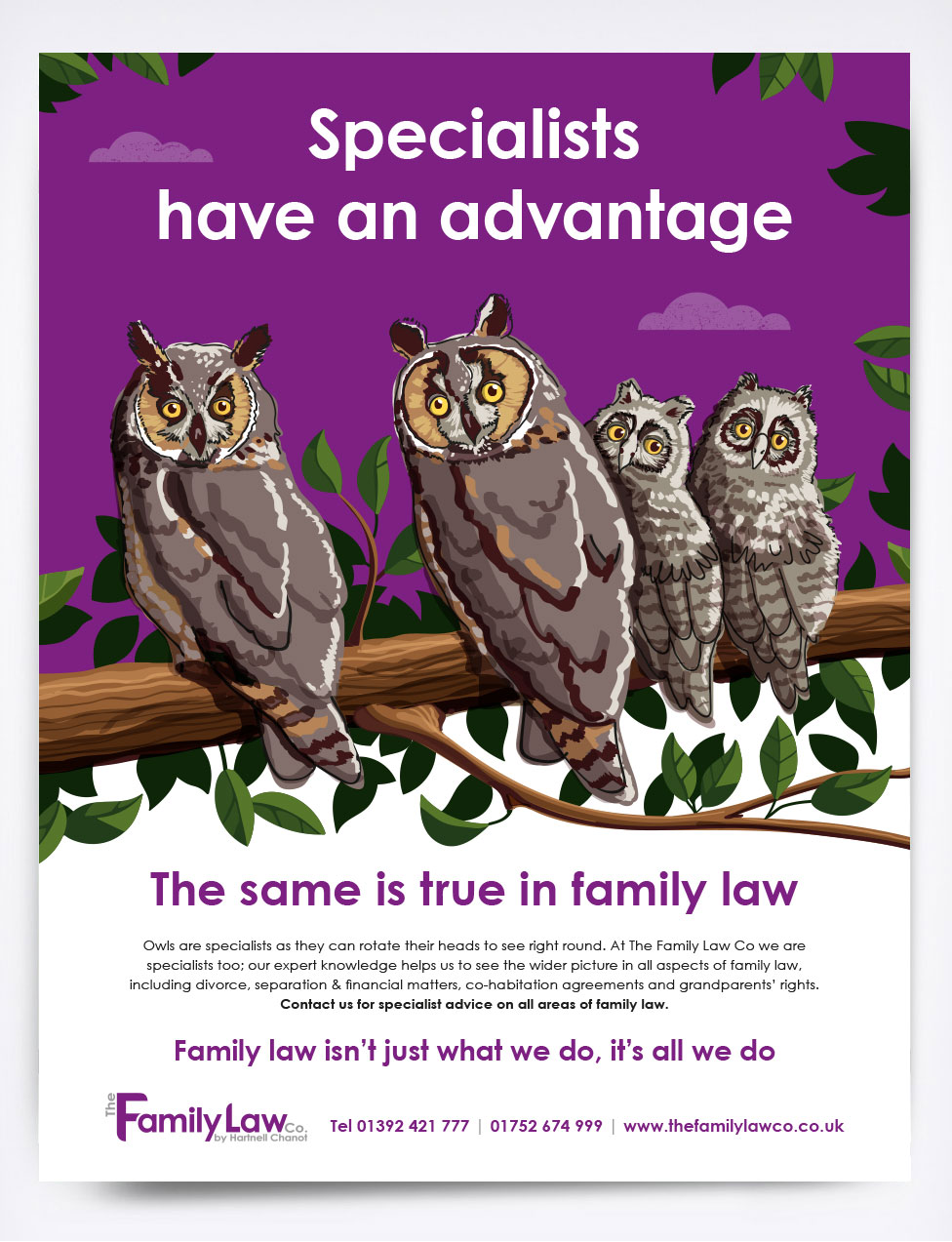 The Family Law Co Owls Advert
